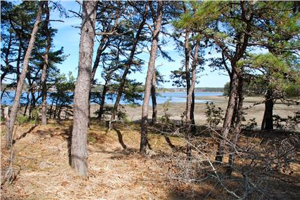 Paine Hollow/ South Wellfleet Cape Cod vacation rental - View of Drummer Cove from the deck