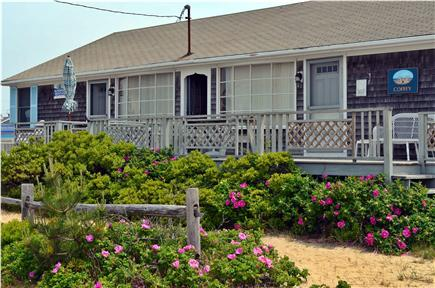 West Dennis Cape Cod vacation rental - Cassic Cape vacation home (other duplex unit rented separately)