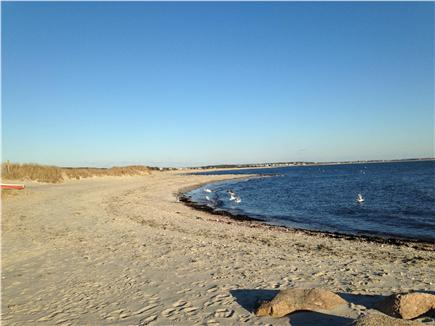 South Chatham Cape Cod vacation rental - Forest Beach just .4 mile away