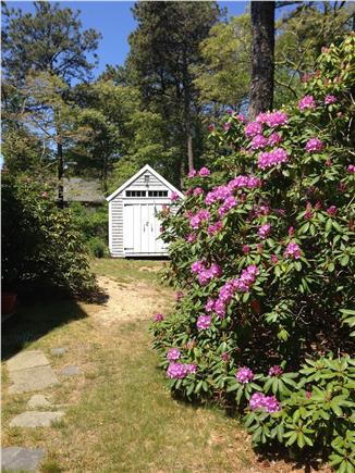 Brewster Cape Cod vacation rental - Writers Cottage