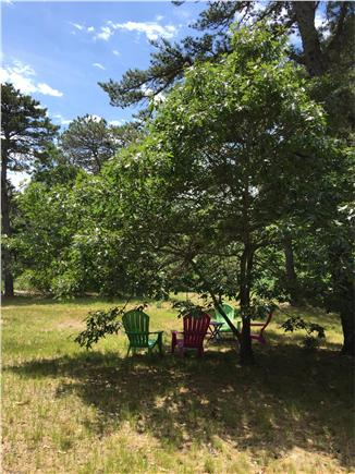 North Eastham Cape Cod vacation rental - Large, private yard.