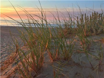 East Orleans Cape Cod vacation rental - Take the the time to watch the sunrise at nearby Nauset Beach