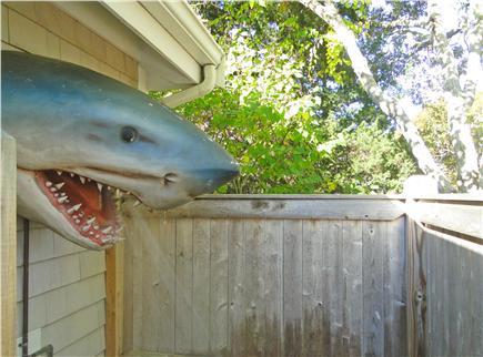 West Harwich Cape Cod vacation rental - Enjoy an unforgettable outdoor shower!