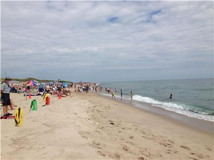 Orleans Cape Cod vacation rental - Ocean swimming, walking the beach, Nauset Beach, 2.5 miles.