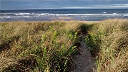 Sagamore Beach Sagamore Beach vacation rental - Dune path in the Fall, onshore breeze