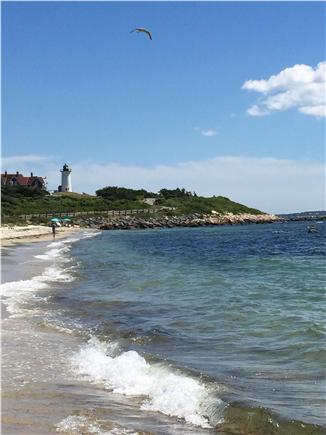 Woods Hole Woods Hole vacation rental - Gorgeous Nobska Beach a quarter mile walk from house