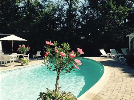 Dennis Village Cape Cod vacation rental - Many ways to relax by the pool