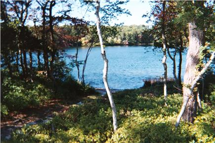 Harwich Cape Cod vacation rental - Back yard freshwater swimming pond