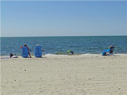 Dennisport Cape Cod vacation rental - Less than a mile to several Dennisport beaches