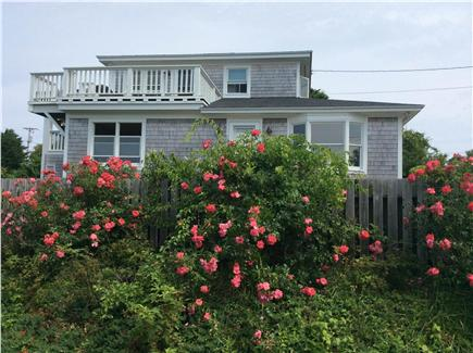 Orleans Cape Cod vacation rental - Beachfront home surrounded by rose bushes