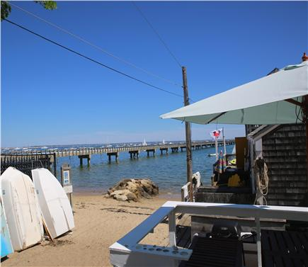 Provincetown, west end Cape Cod vacation rental - View from the back door