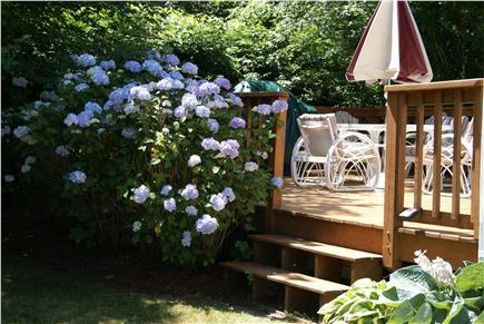 North Chatham Cape Cod vacation rental - Deck - from Back Yard