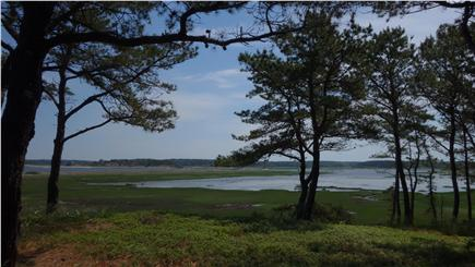 South Wellfleet Cape Cod vacation rental - The view from the East Deck