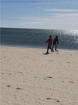 West Yarmouth Cape Cod vacation rental - Beautiful Seagull Beach is just a mile & 1/2 away!