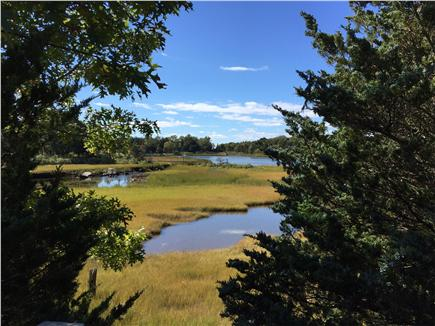 West Falmouth near Old Silver  Cape Cod vacation rental - Tidal Pools from Shining Sea Bikeway