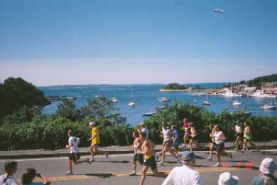 Woods Hole, Falmouth Woods Hole vacation rental - Woods Hole Harbor is 100 yds. from our front door