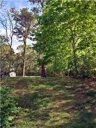 North Eastham Cape Cod vacation rental - Open area outback with one of two parking areas