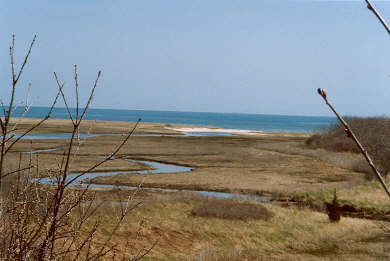 South Harwich Cape Cod vacation rental - View of marsh and ocean from home