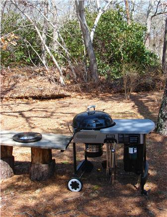 South Harwich Cape Cod vacation rental - New gas ignited charcoal grill