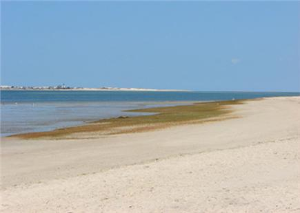 Barnstable Village  Cape Cod vacation rental - Bike ten minutes to enchanting and child-friendly Millway Beach