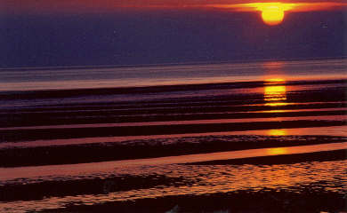 Eastham Cape Cod vacation rental - Sunsets to remember