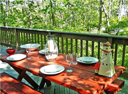 So. Harwich/So. Chatham Cape Cod vacation rental - Dine outside, secluded private back yard