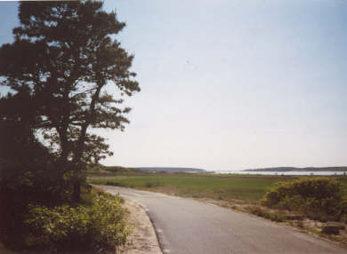 Wellfleet Cape Cod vacation rental - Road leading to beach