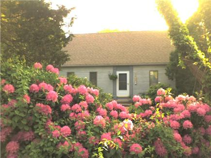 East Orleans Cape Cod vacation rental - Spring on Norseman's drive