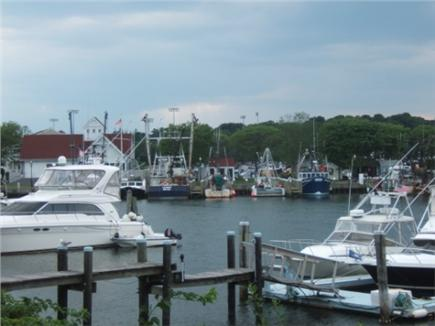 Centerville Centerville vacation rental - Harbor tours and boats to Nantucket and Martha's Vineyard