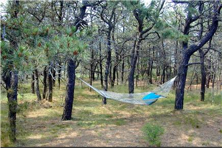 North Eastham Cape Cod vacation rental - Relaxing hammock