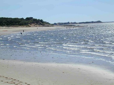 Wellfleet Cape Cod vacation rental - Indian Neck Beach just 1/2 mile away