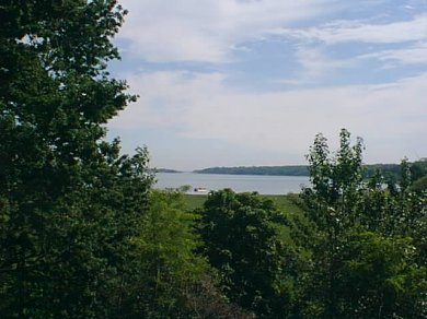 East Orleans on the cove Cape Cod vacation rental - Magnificent view through window