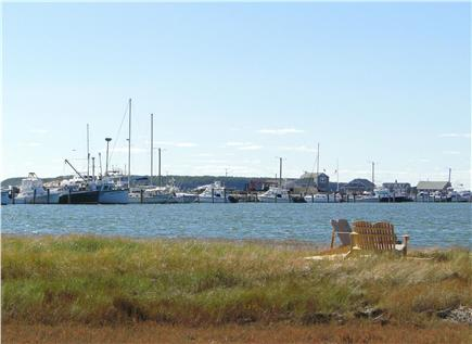 Wellfleet 4 acres on the inner Cape Cod vacation rental - Doesn't get much better than this