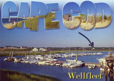 Wellfleet 4 acres on the inner Cape Cod vacation rental - Postcard View of House from Marina