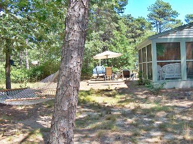 Eastham Cape Cod vacation rental - Backyard view from the shady hammock