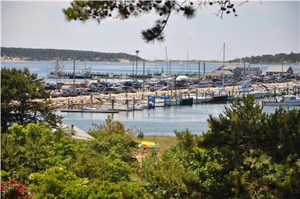 Wellfleet Cape Cod vacation rental - Enjoy this lovely view from all front facing rooms and the patio