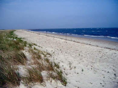 West Yarmouth Cape Cod vacation rental - 5-minute walk to Seagull Beach