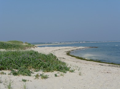 South Chatham Cape Cod vacation rental - Free Parking at Forest Beach, Walking Distance too!