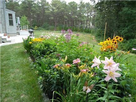 Wellfleet Cape Cod vacation rental - Magnificent gardens