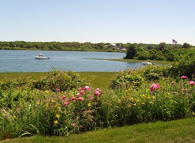 Oyster Pond/Chatham Cape Cod vacation rental - Conservation area