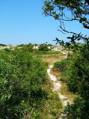 East Sandwich Cape Cod vacation rental - Take a beautiful stroll down the path to beach