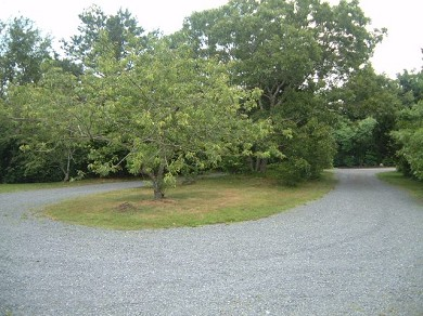 East Sandwich Cape Cod vacation rental - Enjoy 8 acres of privacy and natural beauty