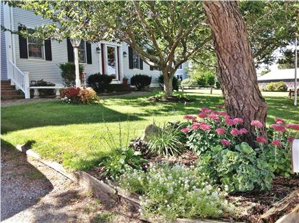 Dennis Cape Cod vacation rental - Front yard
