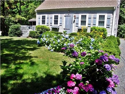 Eastham Cape Cod vacation rental - Welcoming landscaping, lots of places to relax