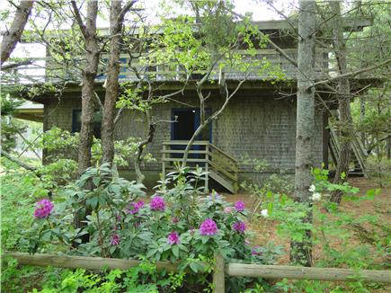 Wellfleet Cape Cod vacation rental - Beautiful wooded area with privacy, house offers wrap around deck