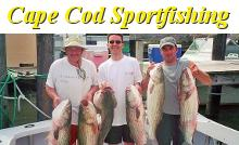 Cape Cod Sportfishing on the Lori Ann