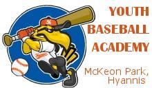 Youth Baseball Academy