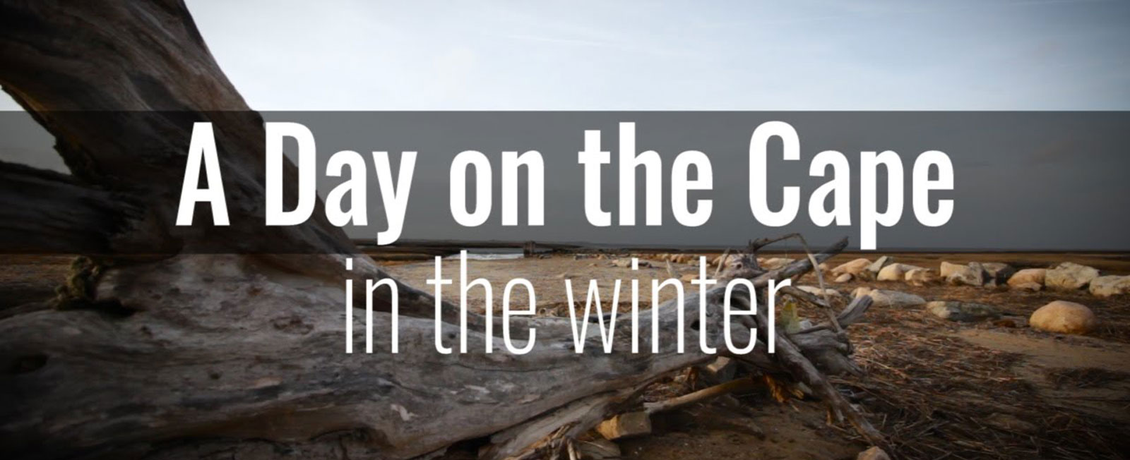 We took the camera with us everywhere we went while on the Cape one day in winter. Come along for the ride!