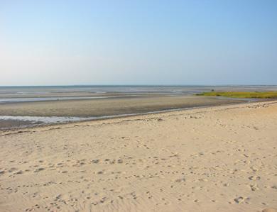http://images.weneedavacation.com/images/photos/skaket-beach-orleans-skaket-054.jpg