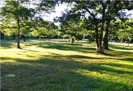 Oak Bluffs Martha's Vineyard vacation rental - Walk 3 minutes to neighborhood park, great for playing ball